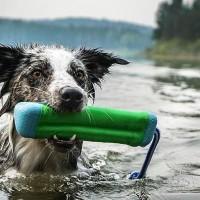 Vand legetøj