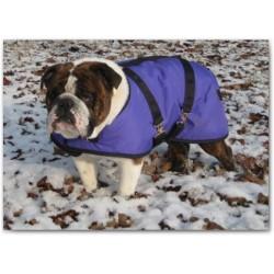 Foggy Mountain Nylon vinterfrakke Engelsk Bulldog Lilla
