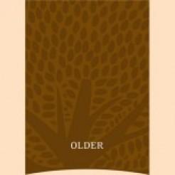 Essential Older