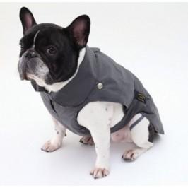 Fashion dog frakke til Mops og bulldogs