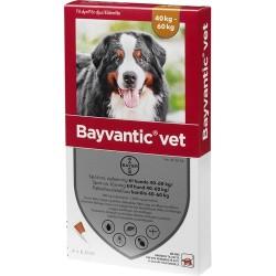 Bayvantic Vet til hund